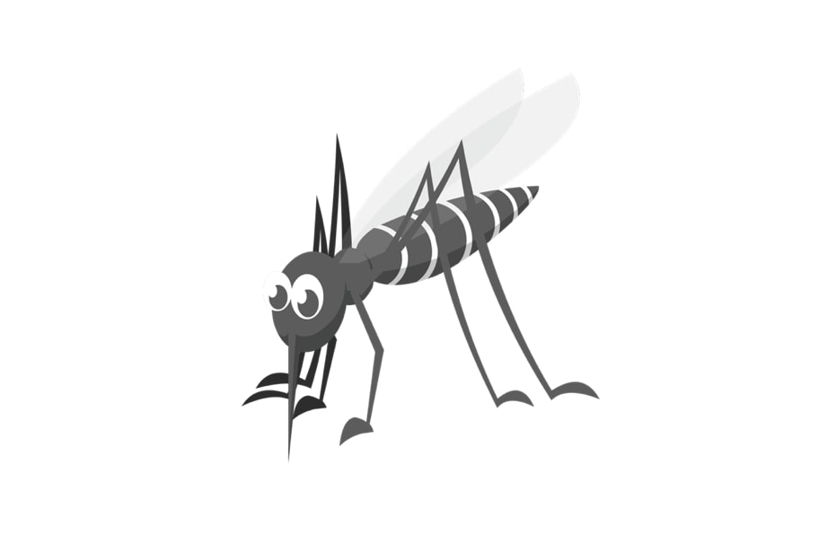 allergie-piqure-moustique